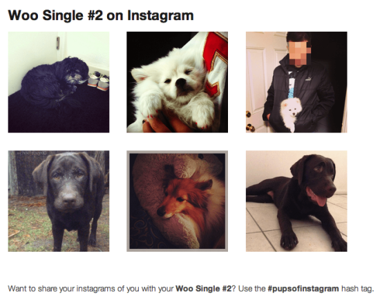 Instagram images with the product hashtag